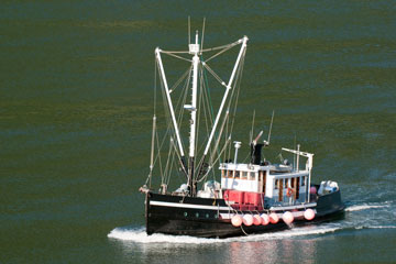 fishing boat in the Gulf of Alaska