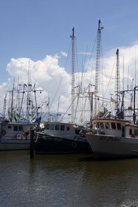 shrimp boats in Biloxi before Hurricane Katrina