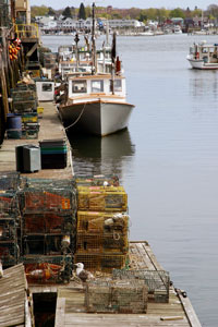 lobster boats - Portland, Maine