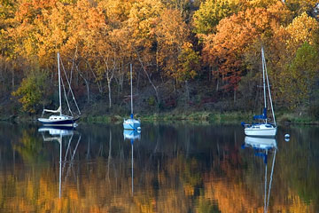 sailboats anchored in a Missouri lake on an Autumn afternoon