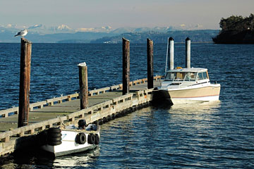 boats at a Whidbey Island dock